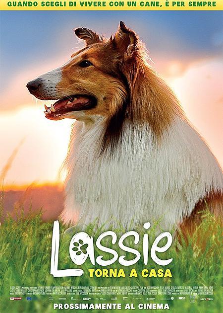 LASSIE TORNA A CASA (1H40')